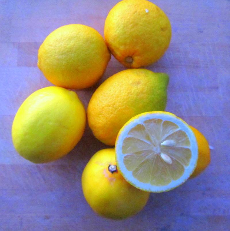 Zitronen Deo selbstgemacht- nachhaltig-biologisch-guenstig reisen