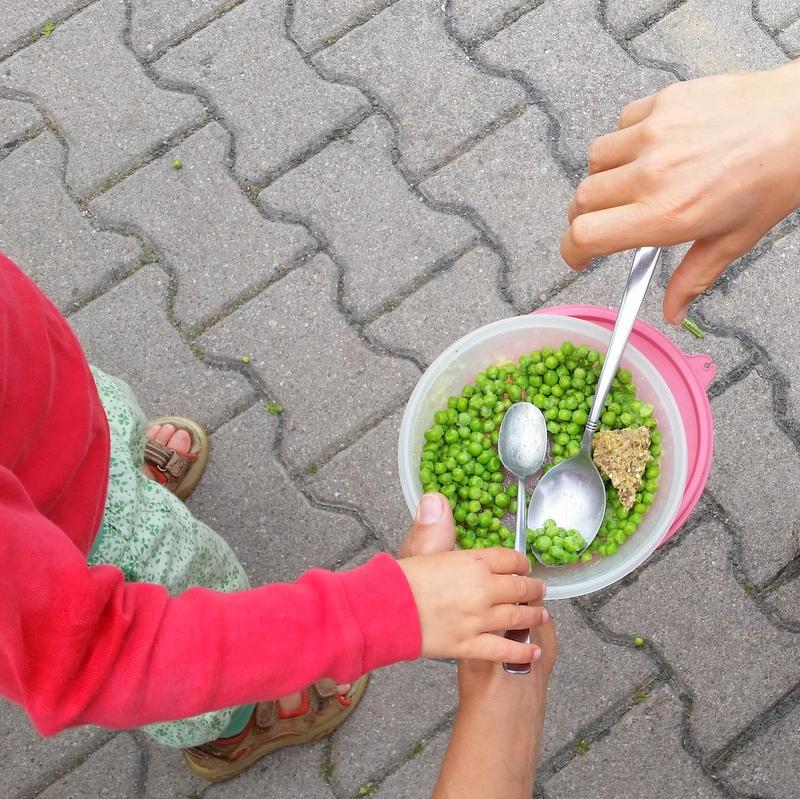 erbsen-mittagessen-green-ortsunabhängig-frei leben