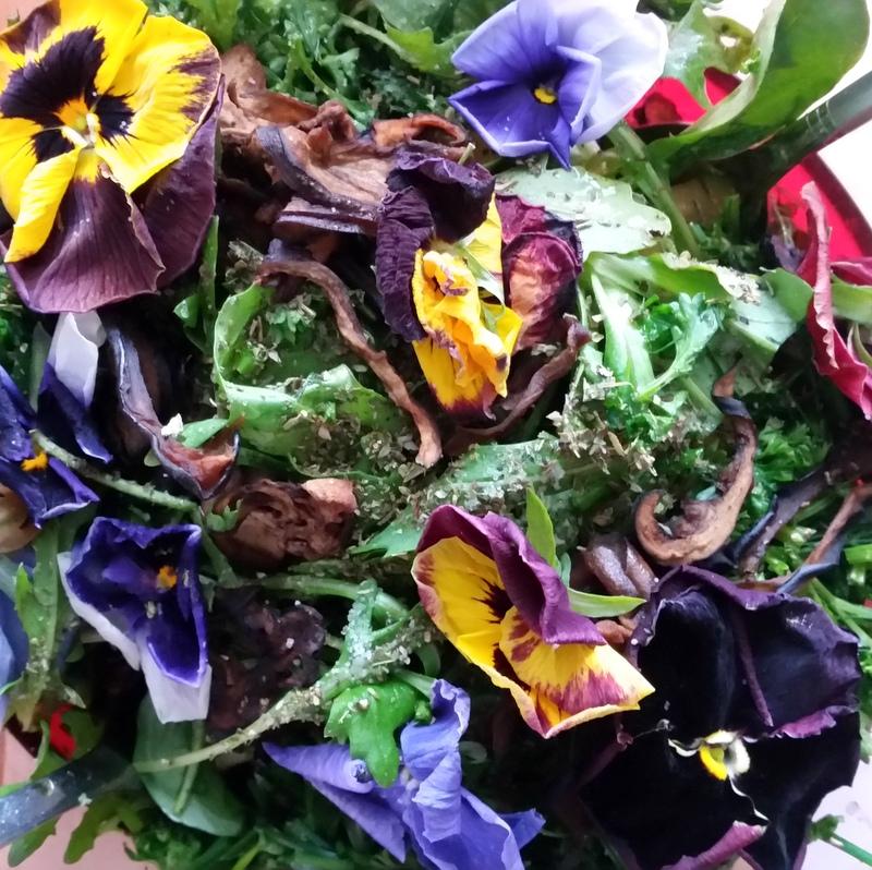 essbare Blüten-Wildkräuter-Salat-detox-gesund-Rohkost-RawFood