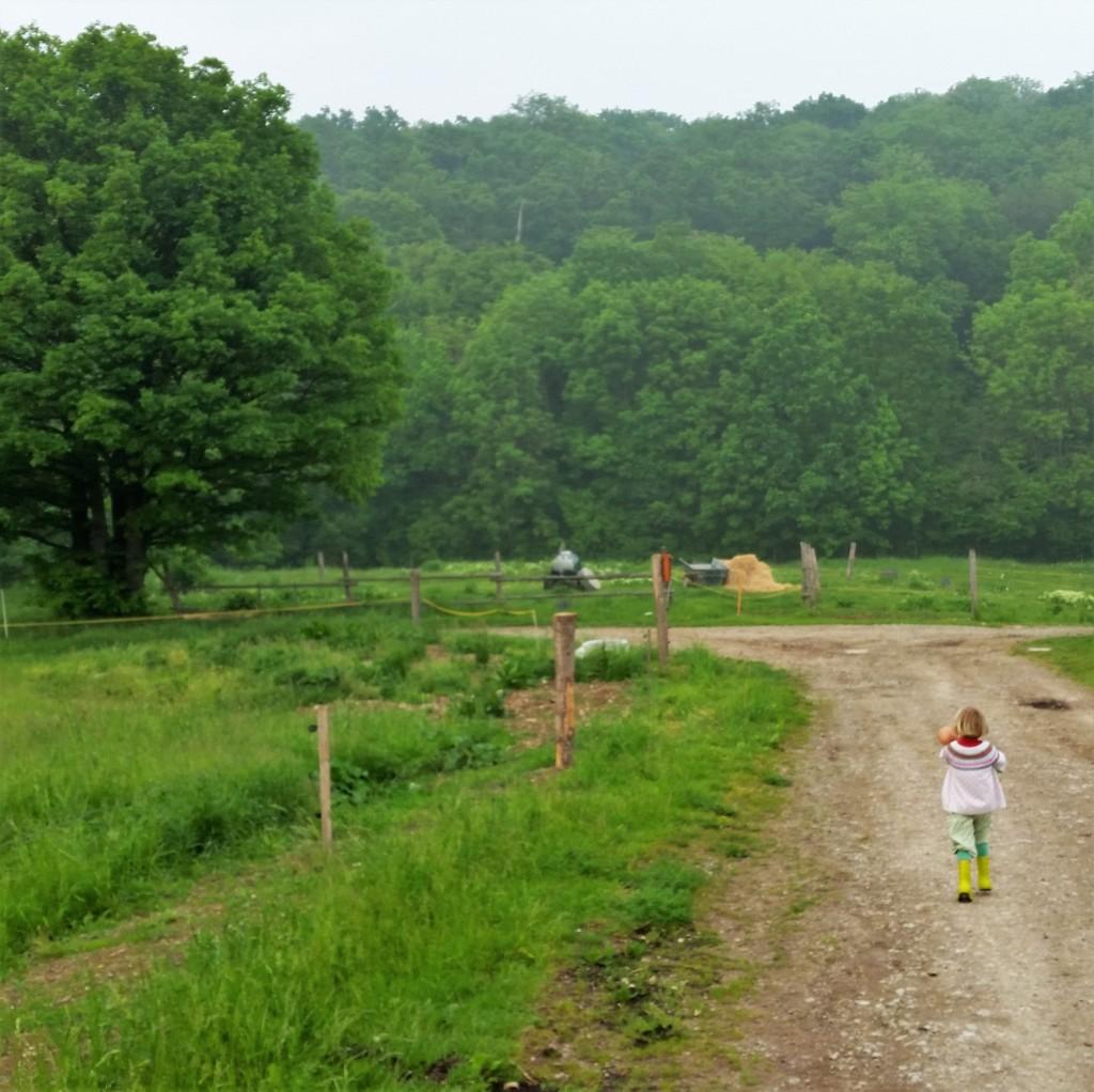 Landleben-Familie-Wochenende-Freiheit-frische Luft-ortsunabhängig-grün