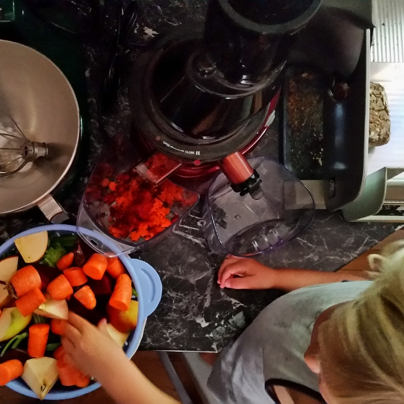 Slow Juice- Rohkost- bewußt Essen- Detox- Frühstück- Saftfasten- Nomaden- ortsunabhängig
