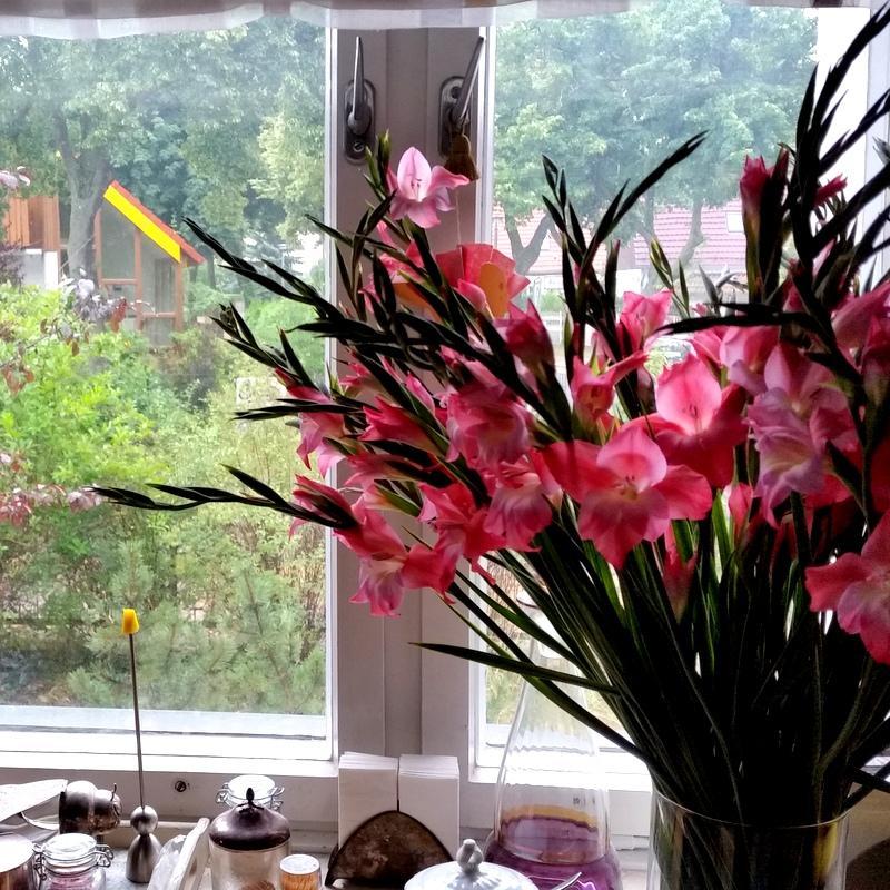 Stilleben- Gladiolen-Küchenfenster- ortsunabhängig-Wohnküche-Nomaden