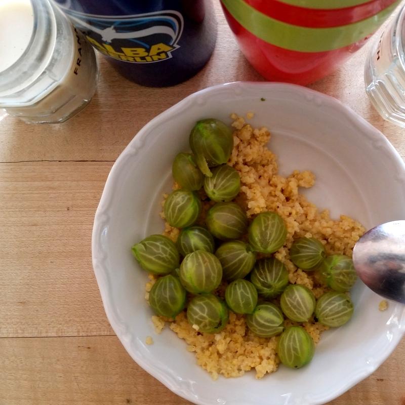 Frühstück-morgens halb zehn in deutschland-Stachelbeeren mit Hirse- Familie- Nomaden- ortsunabhängig