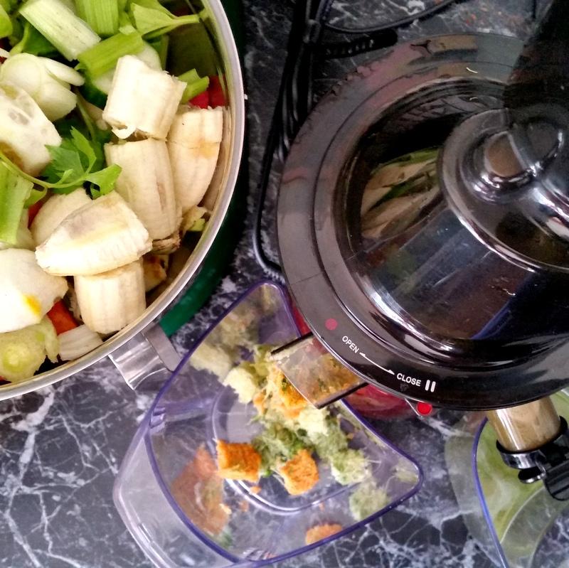 Slow Juicer- Detox- Gemüsesaft- selbstgemacht- frisch- grün- gesund-bewußt- Saftfasten