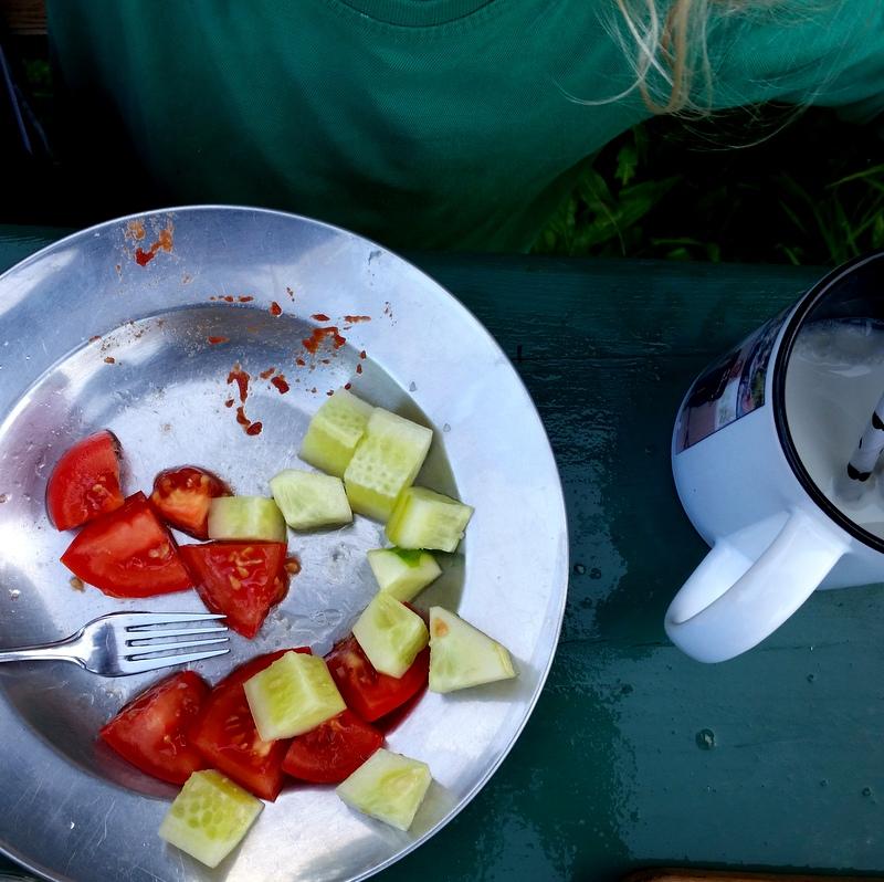 Gurken- Tomaten- Frühstück- Rohkost