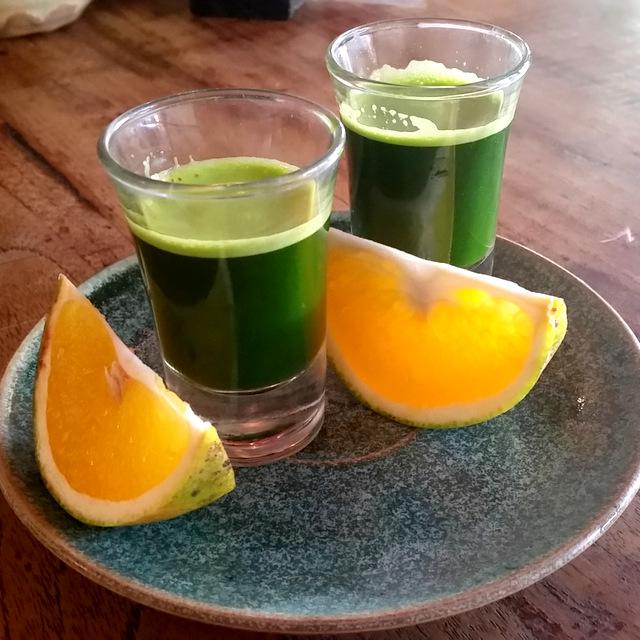 Weizengrass Shot - Frühstück- ersetzt alles- Rawfood