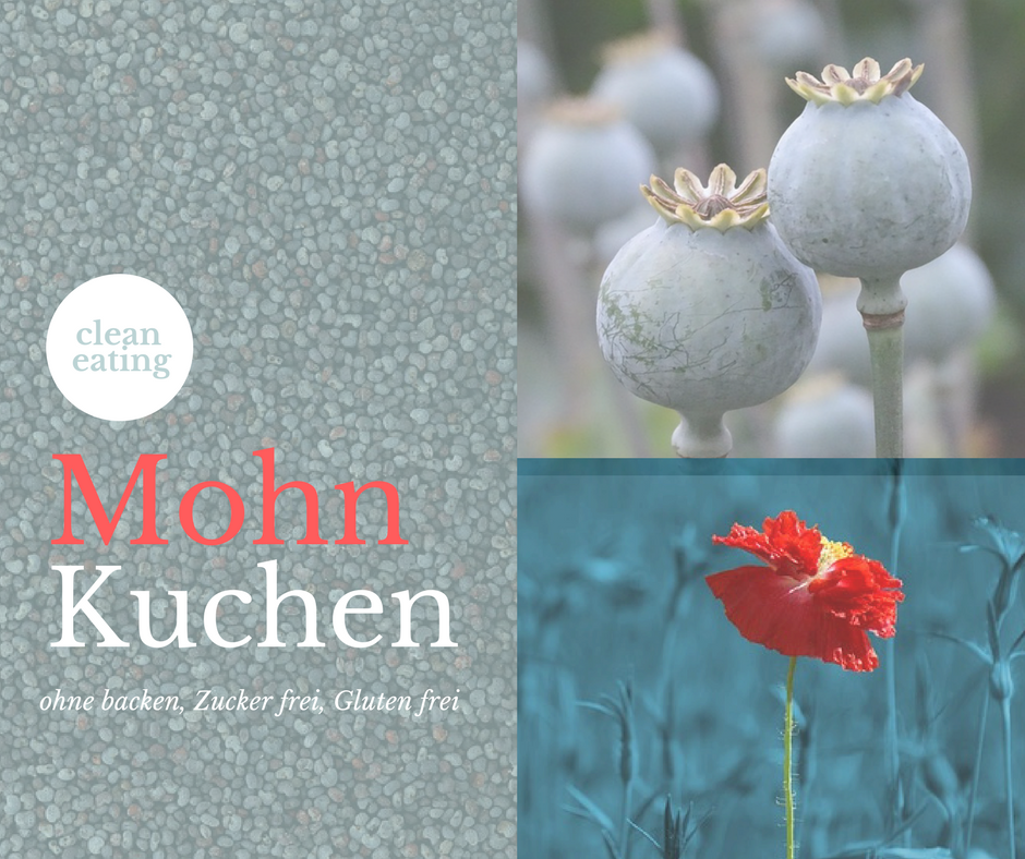 clean eating- mohn- zuckerfrei- ohne backen- rohkost- glutenfrei